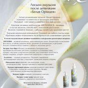 lemon flyer e-net